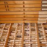 Maggyűjtemény (Magbank)